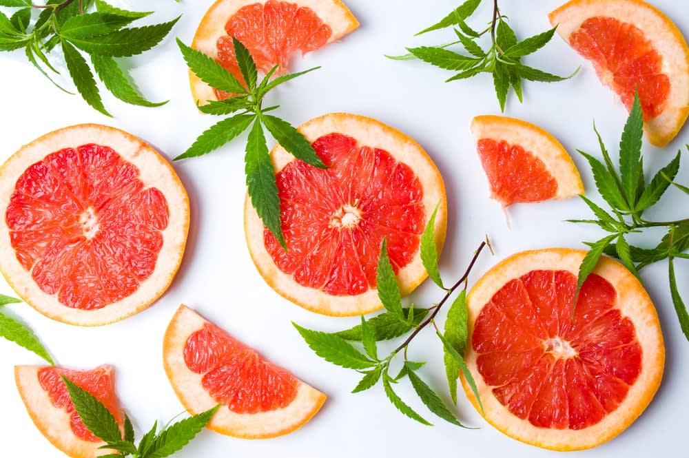 cannabis foods